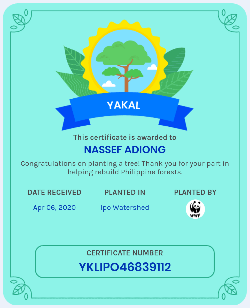 Nassef achievement