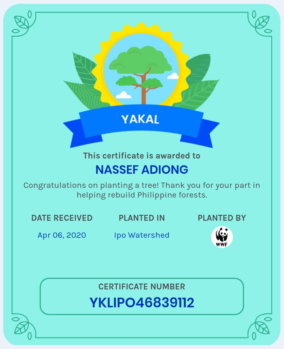 Nassef achievement